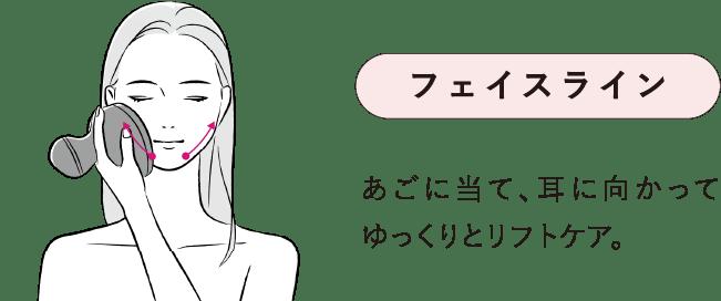フェイスライン